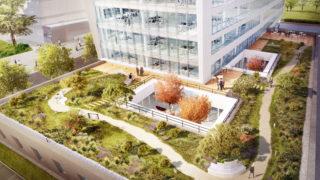 Jardins de l'immeuble Silex¹ à Lyon Part-Dieu. © Crédits Asylum / AIA Architectes.
