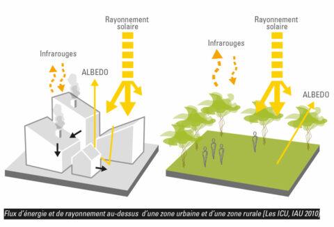 Schéma de fonctionnement de l'Albedo au sujet de la problématique des îlots de chaleur : les flux d'énergie et de rayonnement au-dessus de zones urbaines et rurales.